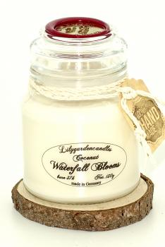 Coconut & Waterfall Bloobs  Stopper Jar
